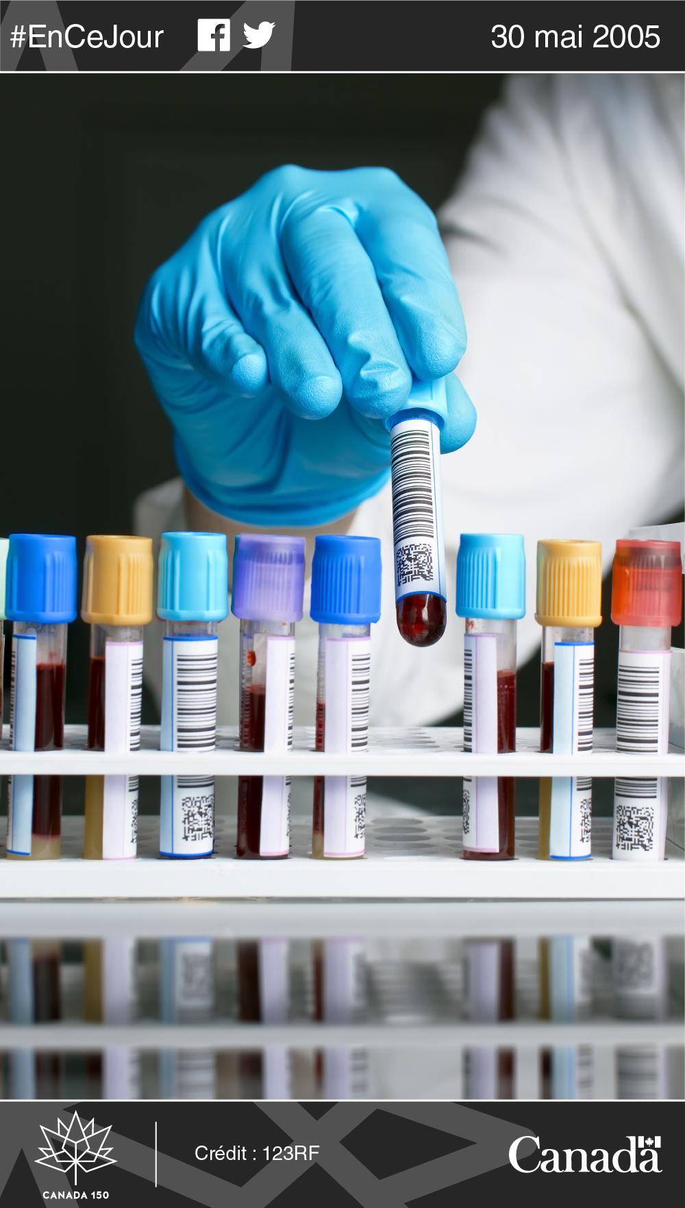 Photo d'un technicien de laboratoire manipulant des échantillons de sang.