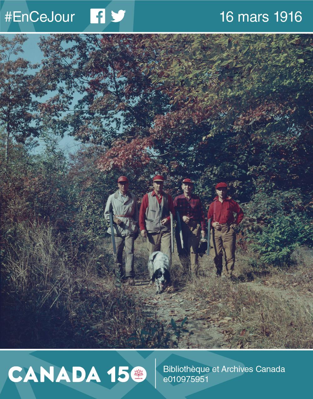 Le comté de Yarmouth en Nouvelle-Écosse est une des meilleures destinations pour la chasse aux oiseaux migrateurs dans les Maritimes. Ces chasseurs de la Pennsylvanie, comme de nombreux Américains, reviennent chasser chaque automne.
